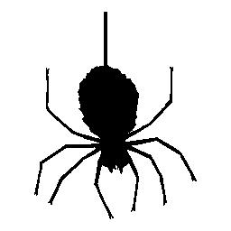 クモのハロウィーン無料アイコン