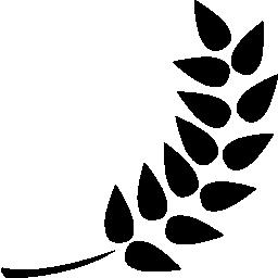 無料ベクトルのアイコンの最大のデータベース小麦無料アイコン