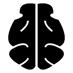 黒脳形状、IOS 7 シンボル無料アイコン