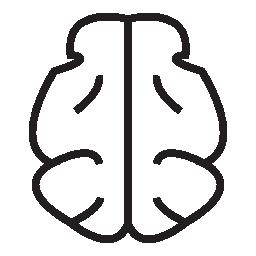 脳形状、IOS 7 シンボル無料アイコン