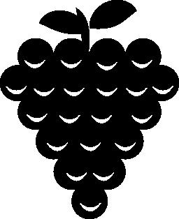 ブドウ無料アイコン