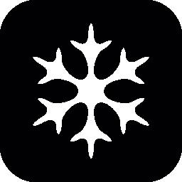 スノーフレーク冬形状黒と白の無料アイコン