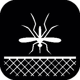 蚊の昆虫と丸みを帯びた正方形のネット無料アイコン