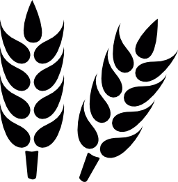 小麦をクローズ アップ無料アイコン