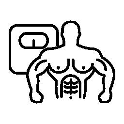 男性の胴体の筋肉とスケール フリー アイコン
