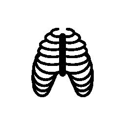 人間肋骨の骨無料アイコン