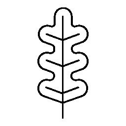 不規則な曲線無料アイコンと植物葉