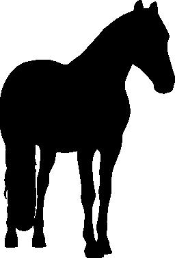 馬黒い動物の形の無料アイコン