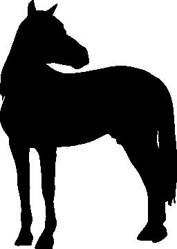 馬の頭の黒いシルエットは、右側の無料のアイコンを探しになって立っています。