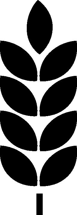 無料アイコンの葉植物