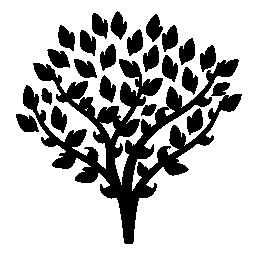 無料アイコンの葉で覆われて細い枝を持つツリー