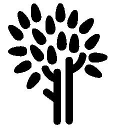 木の幹や葉の無料アイコン