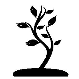 グランド無料アイコン上の小さな木