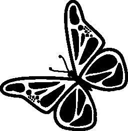 蝶回転無料アイコン