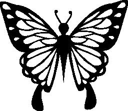 トップ ビュー無料アイコンから繊細な翼を持つ蝶します。