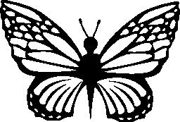蝶形無料アイコンの繊細さ