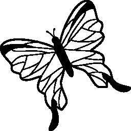 無料のアイコンを左に回転させるトップ ビューから繊細な翼を持つ蝶します。