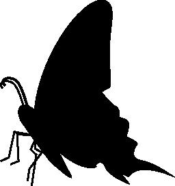 蝶黒側ビュー シルエット無料アイコン