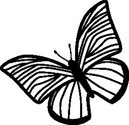 無料のアイコンを左に回転させる薄い縞翼の蝶