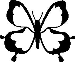 蝶トップ ビュー デザイン無料のアイコン